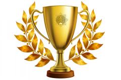 Спортивні перемоги (змагання з різних видів спорту, чемпіонати, турніри, кубки)