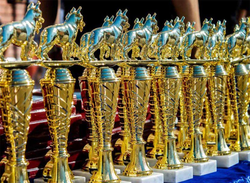 Відкритий чемпіонат України з багатоборства кінологів